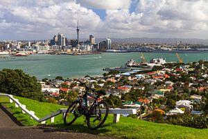 Auckland's Housing Bubble