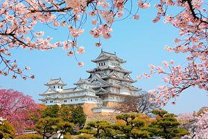 Australia, Japan Top For Tourists