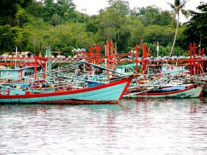 Indonesia's War on Illegal Fishing Nets New China Vessel