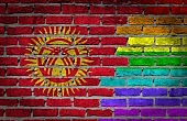 Anti-gay Crashers Charged with Hooliganism in Kyrgyzstan