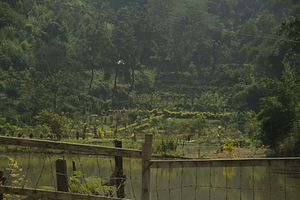 Militancy Strikes Back In India's Northeast