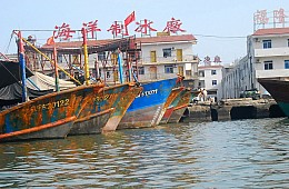 China Must Join the War on Illegal Fishing