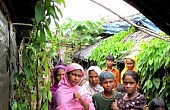 ASEAN Move on Rohingya, Slow But Forward