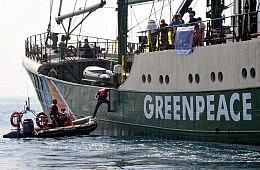 Under Fire: NGOs Face Increasing Hostility