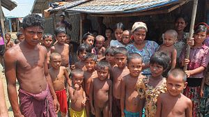 A Rational Approach to the Rohingya Crisis