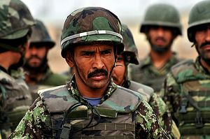 Central Asia's Stake in Afghanistan's War
