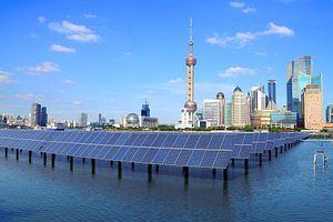 China's Green Leap Forward
