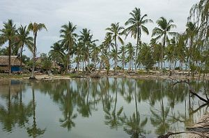 Kiribati and the Future of Coal