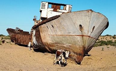 aral sea photo essay