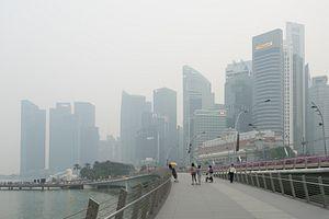 Singapore Haze: A New Strategy Needed