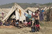 The Rohingya: Humanitarian Crisis or Security Threat?