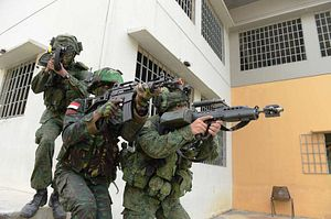 Singapore, Indonesia Conduct Joint Military Exercise