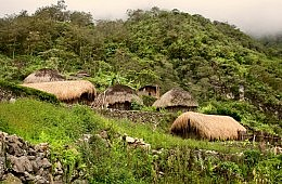 Indigenous Communities and Biodiversity