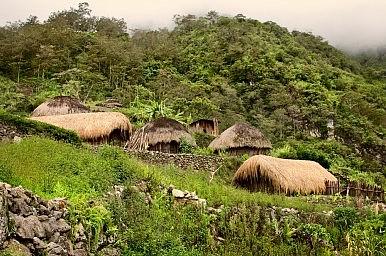 Indigenous Communities and Biodiversity