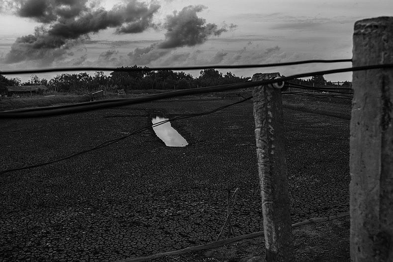 A dry shrimp pond. Photo by Gareth Bright.