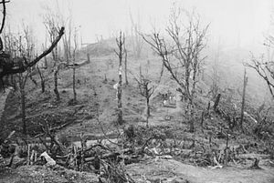 The Battle of Kohima and Indian Historical Consciousness