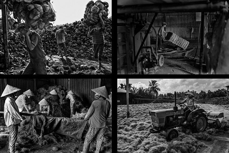 TOP: Factory workers carry the husks of coconuts to the machine (L) and a worker wheels a bale of fibers through the warehouse (R). BOTTOM: Workers gather fibers to take outside to dry in the sun (L) and a worker separates husks with a tractor (R). Photos by Gareth Bright.