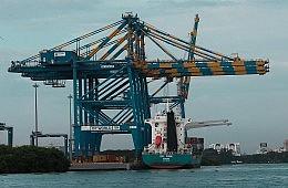 What's Behind India's Big Export Decline?