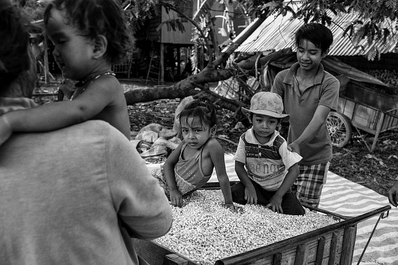 A family in Khpob Ateav. Most of the corn is sold to wholesalers which distribute it in Vietnam and Thailand as animal feed. Photo by Gareth Bright.