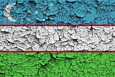 Corruption, Politics, and Power in Uzbekistan
