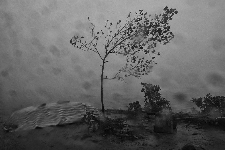 A small tree stands strong against the monsoon rains in the village of village of Khpob Ateav on the banks of the Mekong in Cambodia. Photo by Gareth Bright.