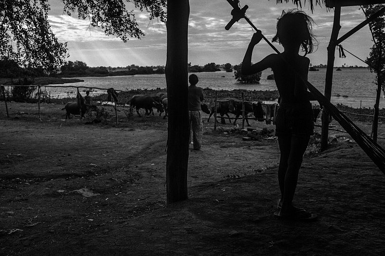 A young girl watches on as the small herd of cattle are herded early morning in remote village of Tae Pi. Photo by Gareth Bright.