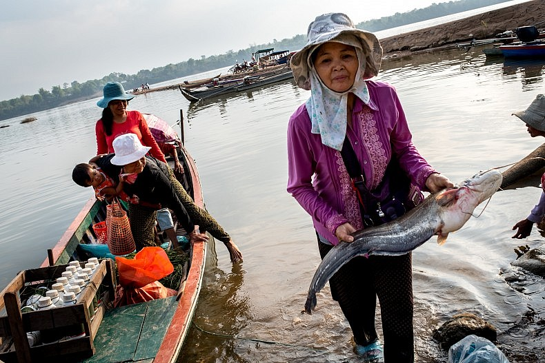 A fish vendor carries a catfish to shore in the city of Steung Treng. Photo by Luc Forsyth.