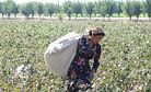 Uzbekistan: White Gold, Dirty Business
