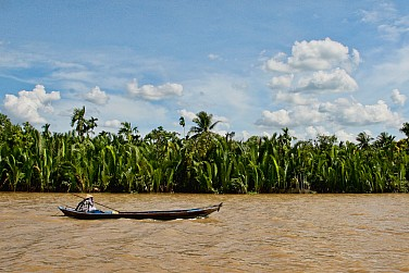 Will the Environment Be the Vietnam Government's Downfall?