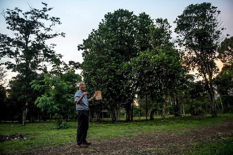 Inpong Sananikone stands in front of a one hundred year old coffee tree on his organic plantation on the Bolaven plateau. A Laos-born French citizen, his plantation produces high quality tea and coffee for export around the world. Photo by Luc Forsyth.