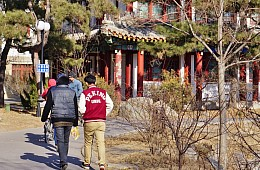 China's Increasing Numbers of Fake Universities