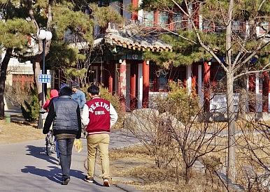 China's Increasing Numbers of Fake Universities