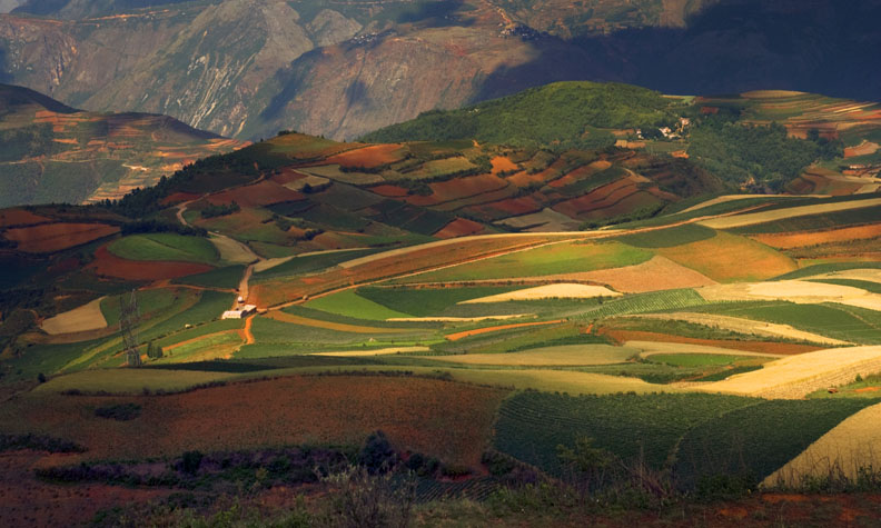 The Farming Palettes of Yunnan