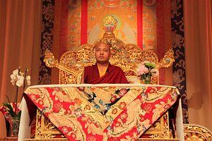 Tibet's 17th Karmapa on Climate Change, the Dalai Lama, and China