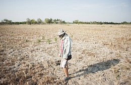 Thailand's Drought Struggle