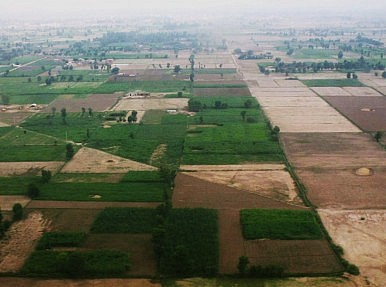 Saving Pakistan's Dying Agriculture Sector