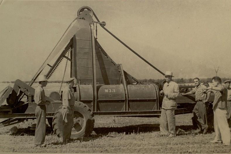 Crop harvesting in a Korean kolkhoz in the late 1950s. Courtesy of Victoria Kim.