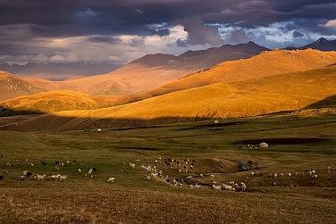 Kazakhstan's Land Reforms
