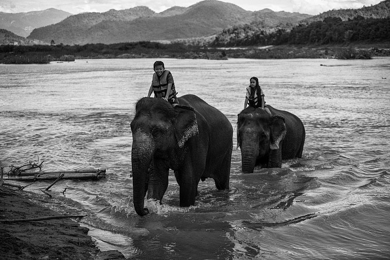 Not all elephants are employed in ecotourism--such as taking these children for a ride. Photo by Gareth Bright.