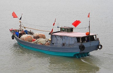 China and Africa's Illegal Fishing Problem