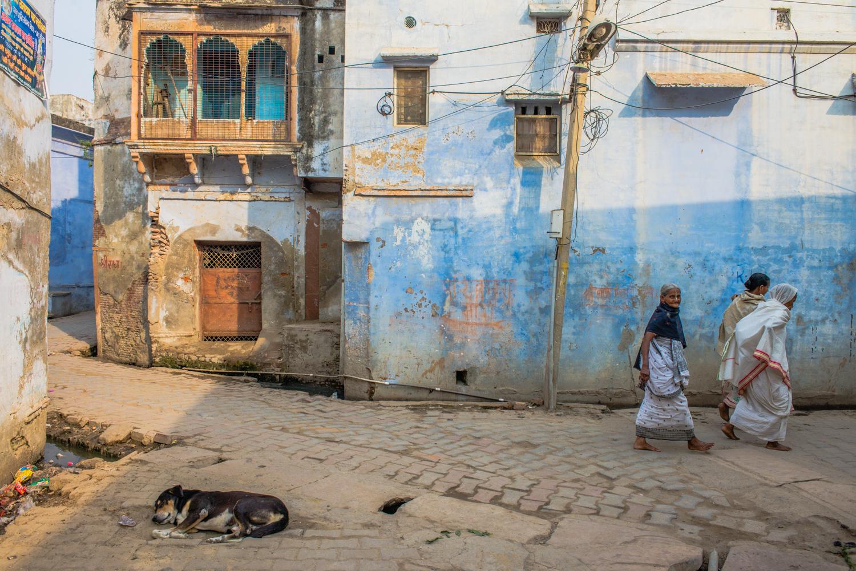 Mothers: The Widows of Vrindavan | The Diplomat