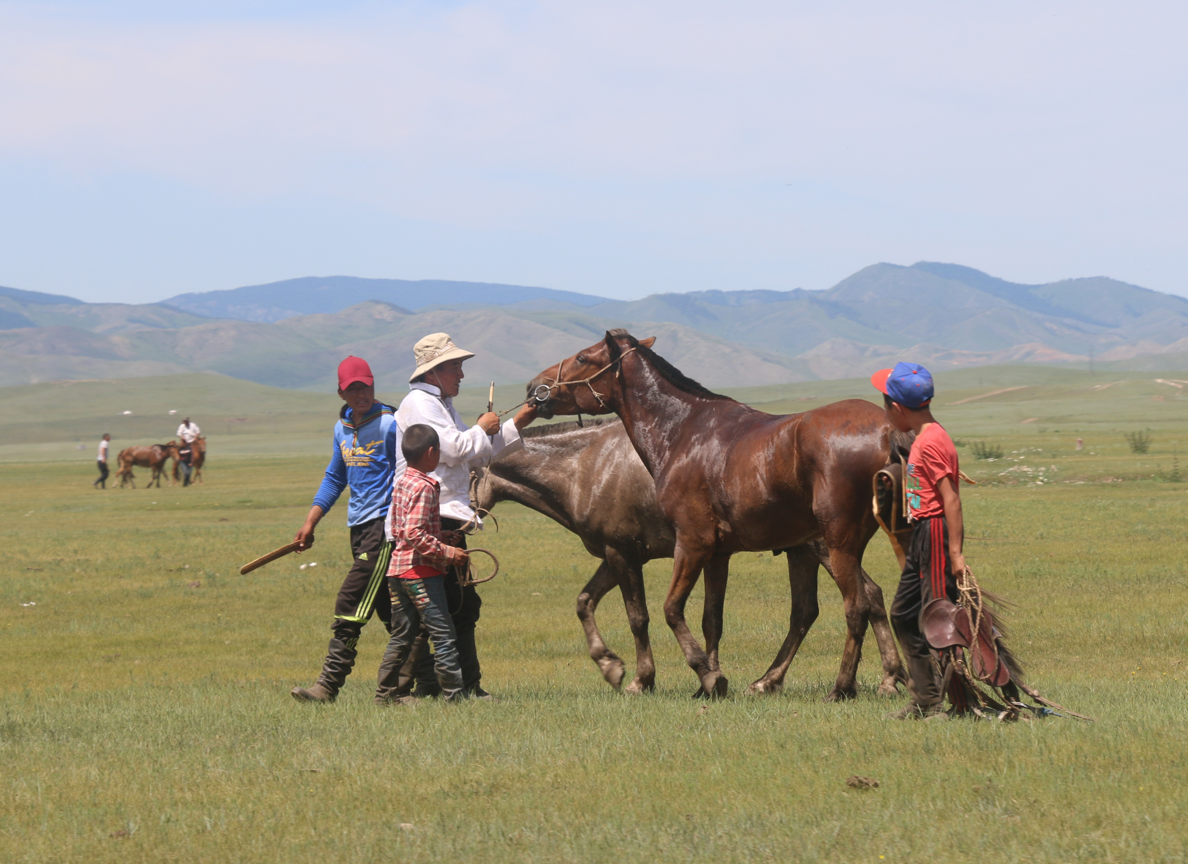 The Herding Life in Mongolia