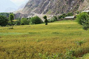 Pakistan: Afghanistan's Unreliable Breadbasket