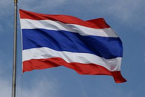 Thailand's Future After the Constitutional Referendum