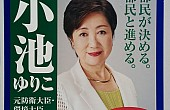 Tokyo's Governor Throws in With a New Political Party
