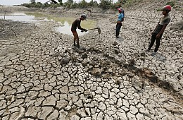 Desperate Times for Cambodia's Farmers
