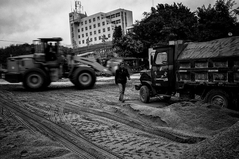 Trucks wait to be loaded with dredged sand. Photo by Gareth Bright.