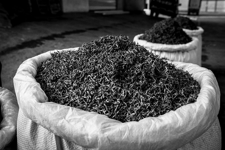 Pu'er tea market, Yunnan, China. Photo by Gareth Bright.