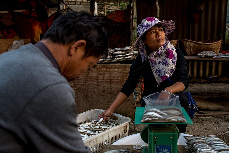 Fish vendors sort their catch at a local market in Jinglin, Yunnan province, China. Photo by Luc Forsyth.
