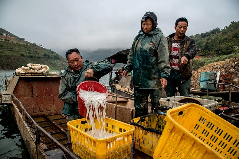 Fishermen sort their morning's catch on a tributary of the Lancang (Mekong) river in Yunnan, China. Photo by Luc Forsyth.